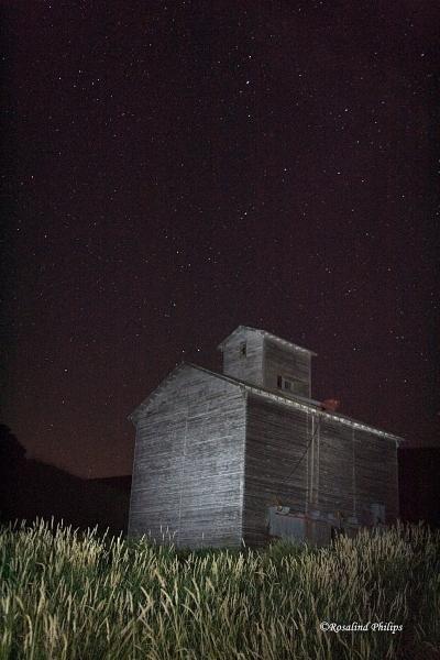 Night Grain Elevator